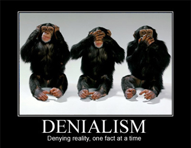 SUFFERING FROM DENIALISM: A CHALLENGE FOR SERVUS CHRISTI ~By Treena Gisborn